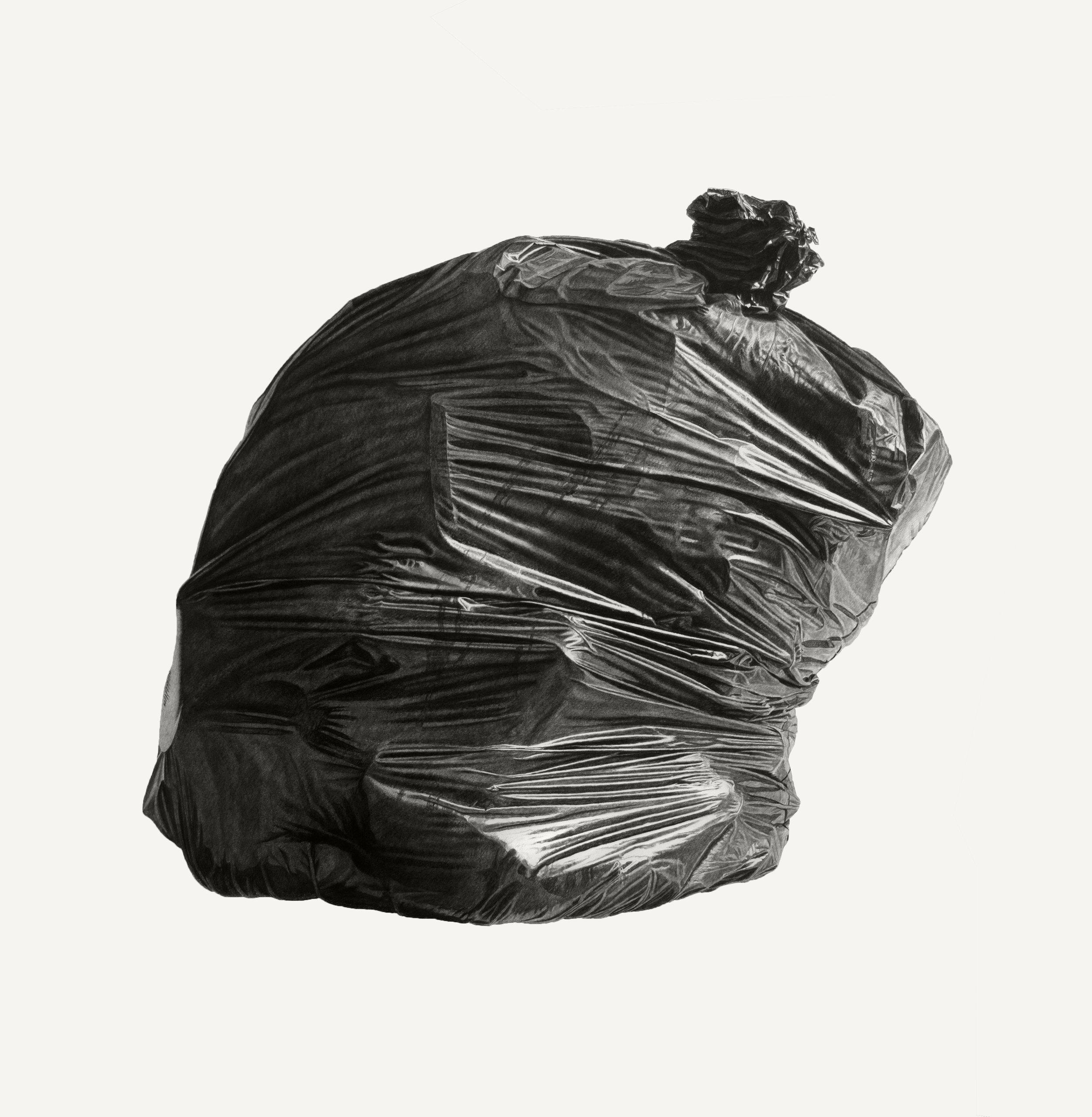 Neighborhood Still Life #8 (Black Bag)