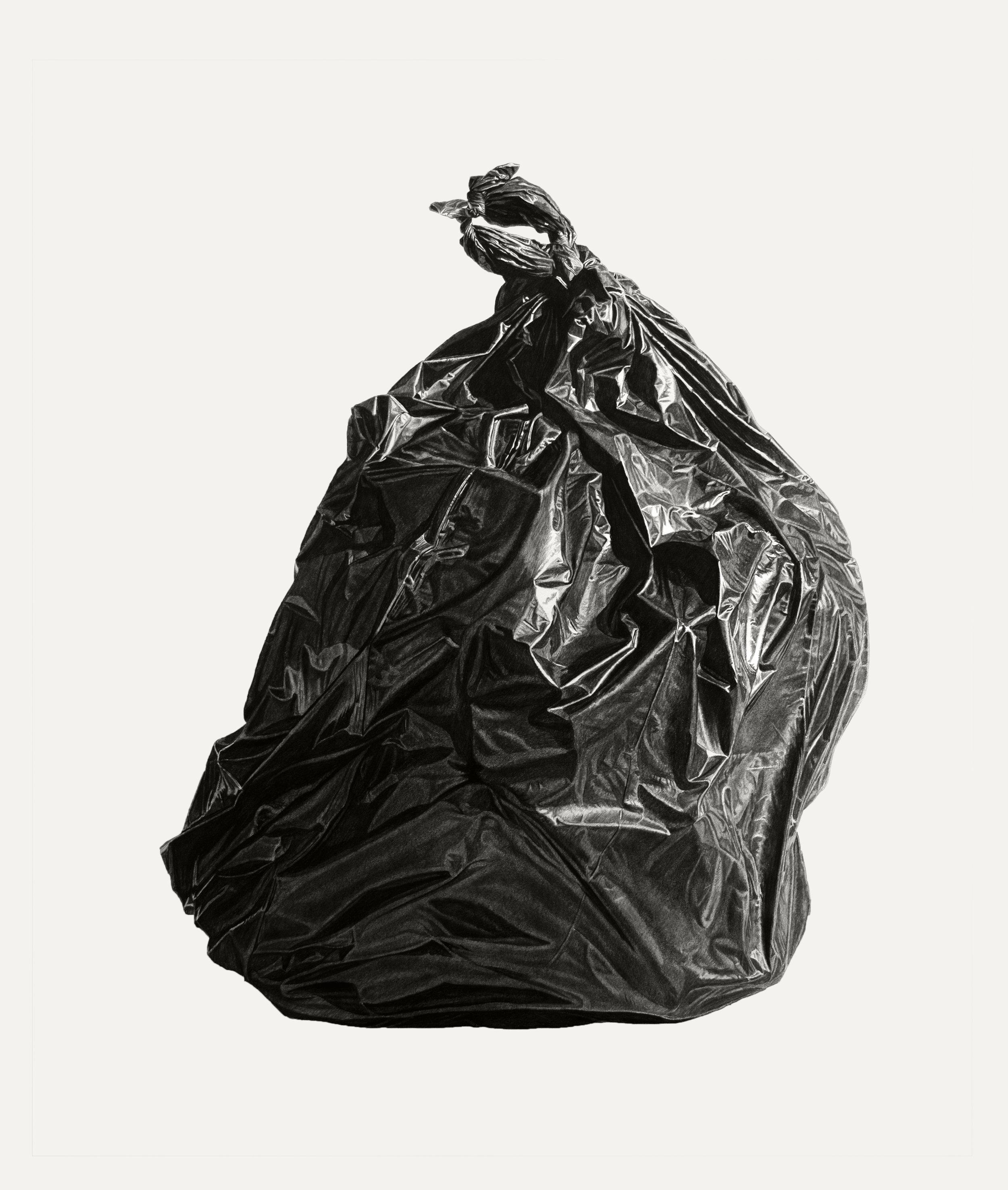 Neighborhood Still Life #6 (Black Bag)