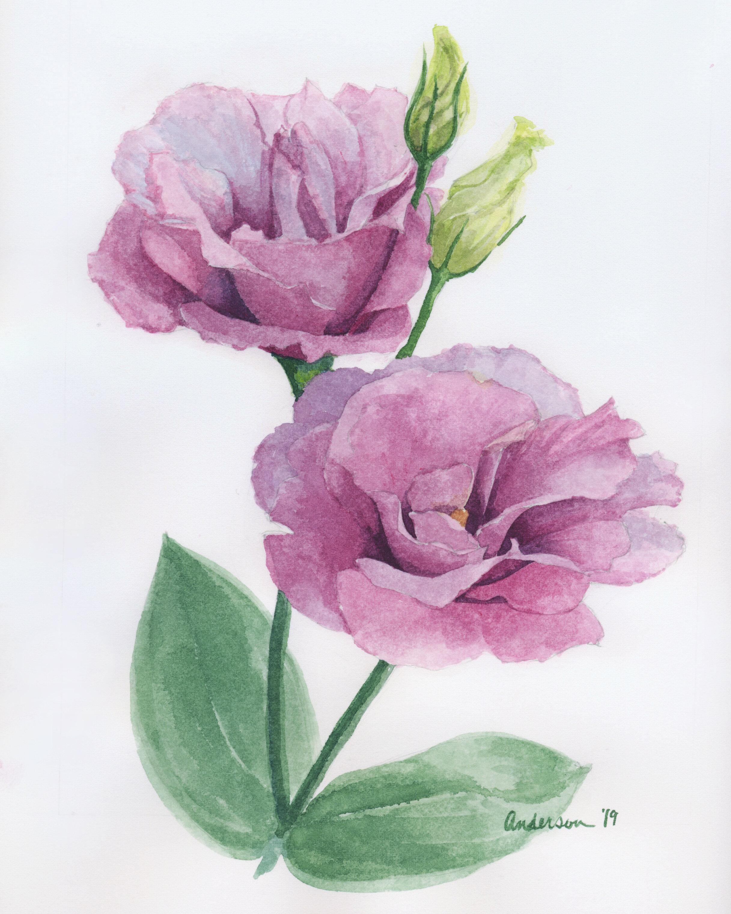 Purple Flower Duo - Aug 2019.jpg