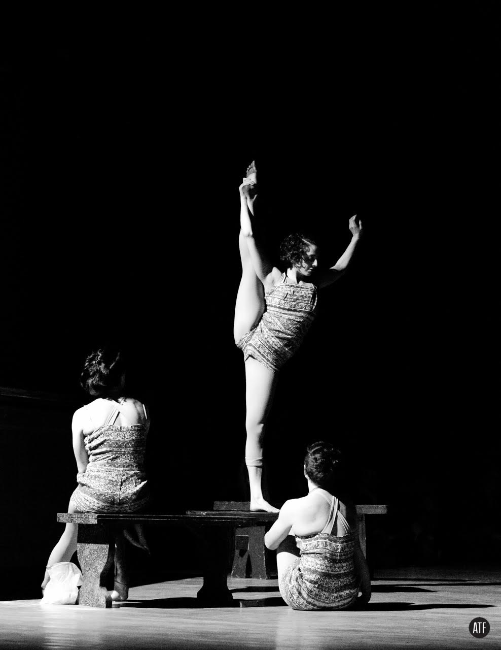 Story Hour (split)_ Only Child Aerial Theatre_Andrew T Foster.jpg