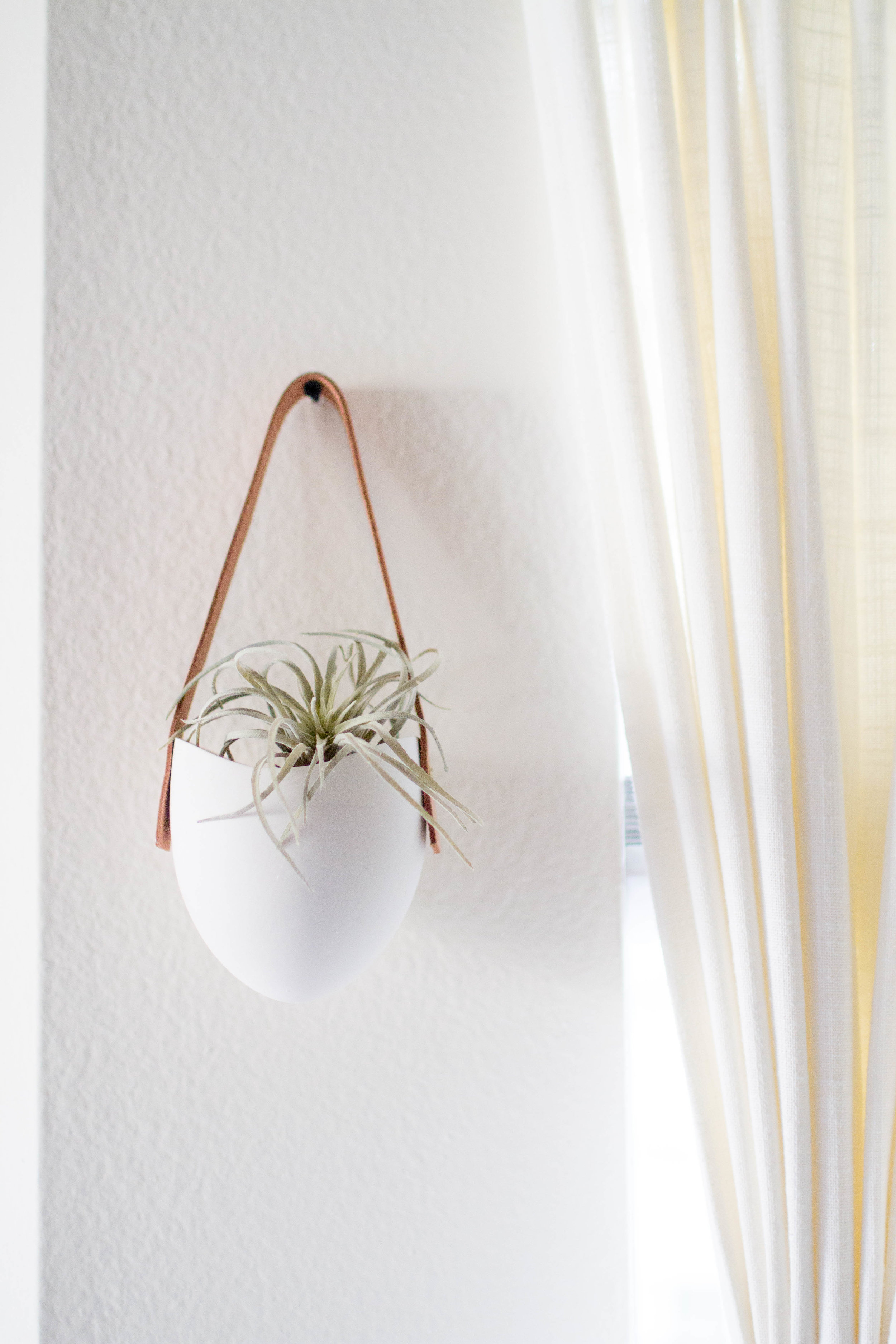Shop faux succ  HERE    Shop similar wall hanging  HERE