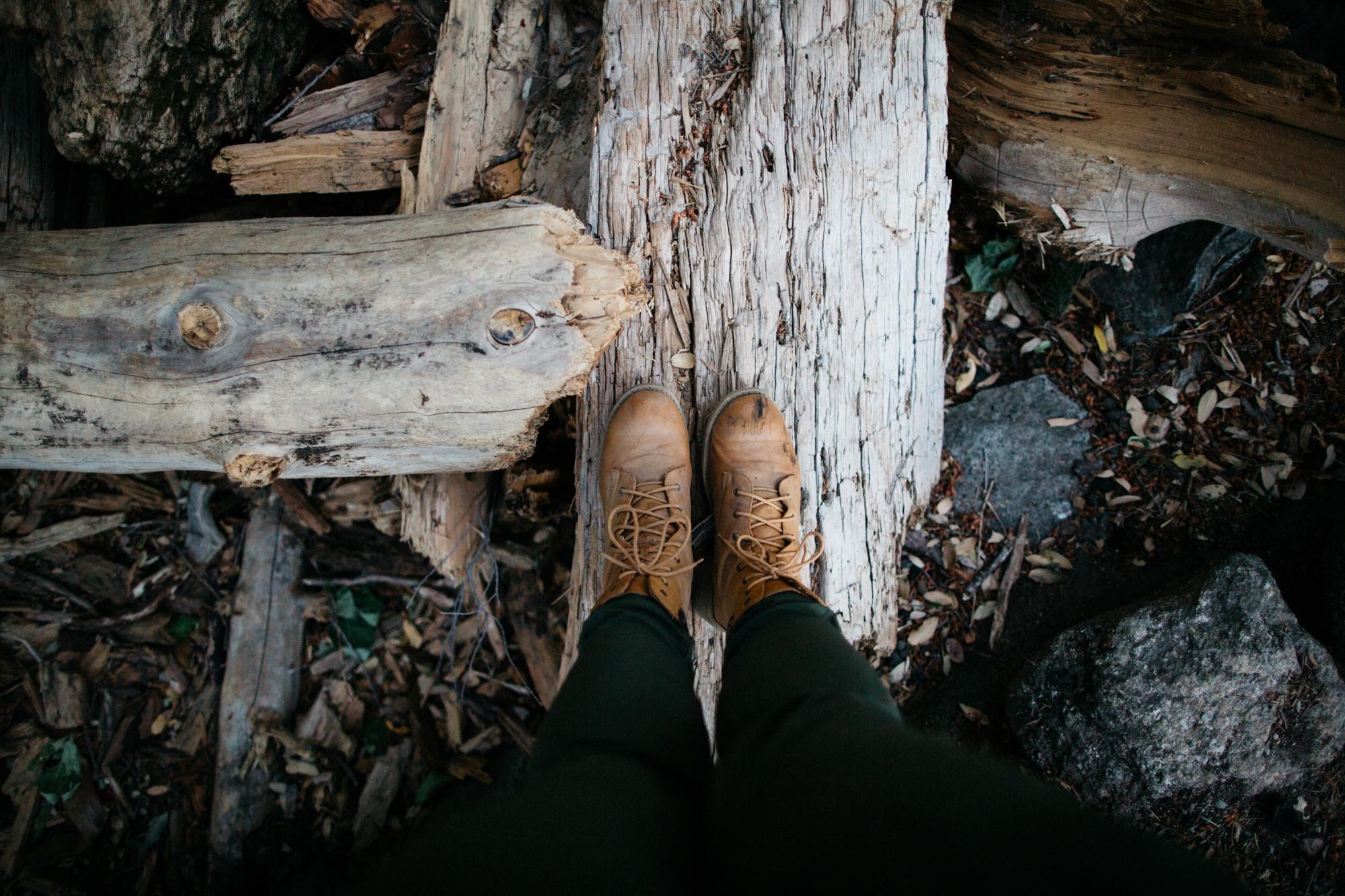 SamErica Studios - Yosemite Adventure-3.jpg