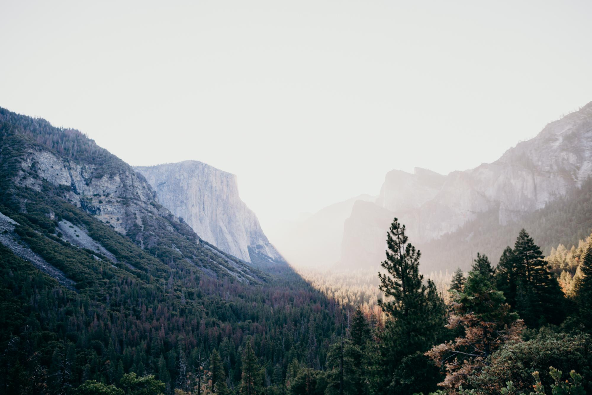 SamErica Studios - Yosemite Adventure-11.jpg
