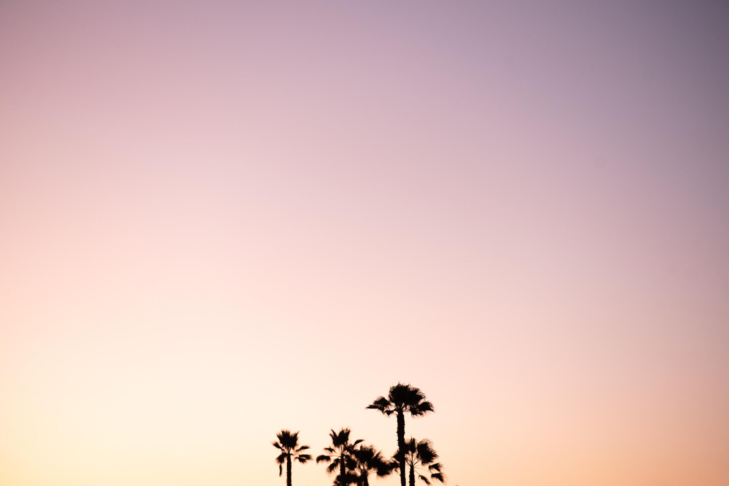 SoCal Standard - San Diego Engagement Photographer - Beach Bonfire at the Hotel Del Coronado-50.jpg