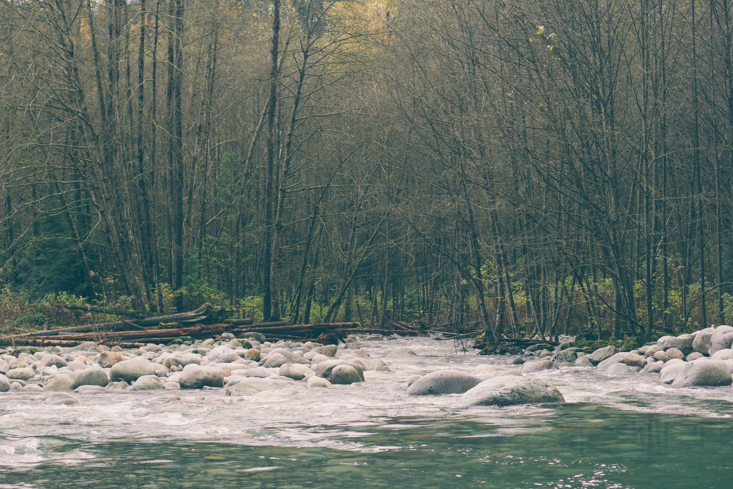 spring river .jpg