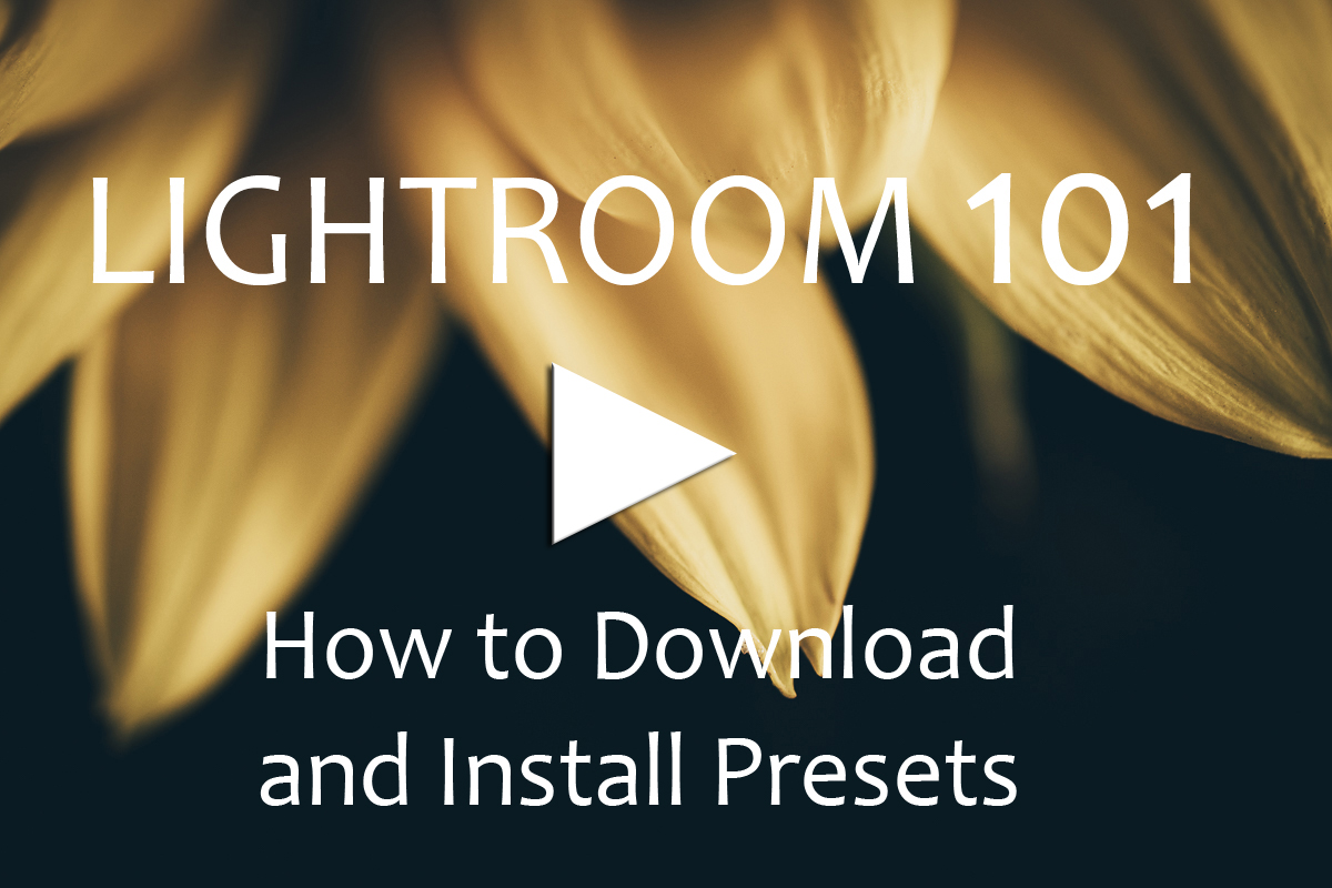 How to Download and Install Presets