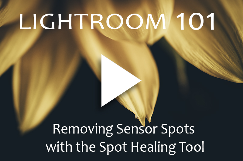 Removing Sensor Spots with Spot Healing Tool