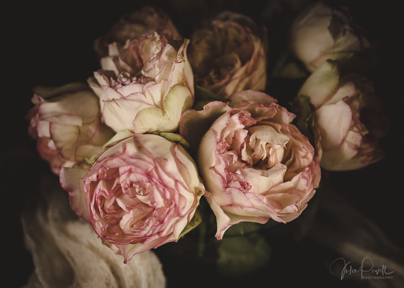 Julie Powell_Peony-5.jpg