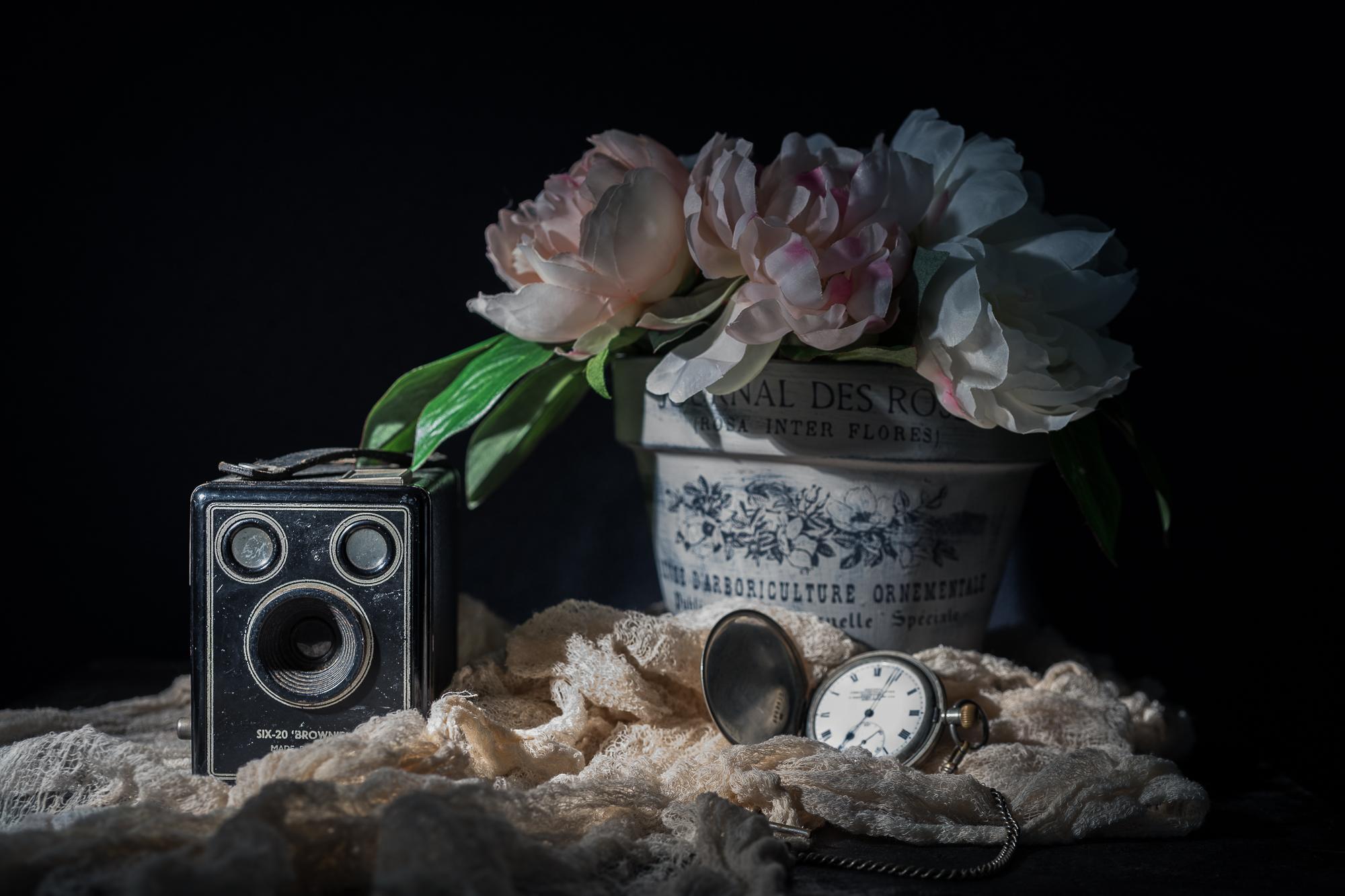 Julie Powell_D&M.jpg