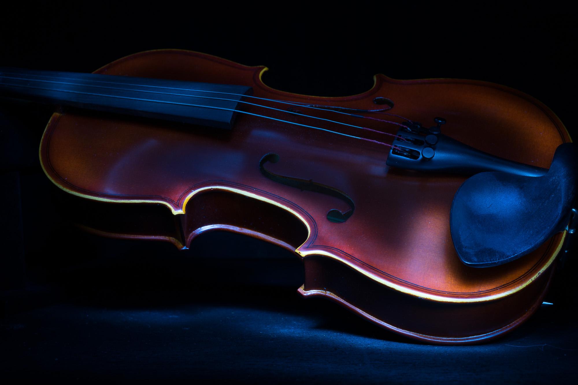 Julie Powell_The Violin-4.jpg