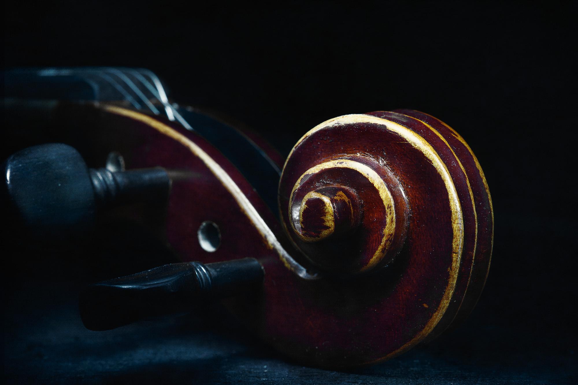 Julie Powell_The Violin-5.jpg