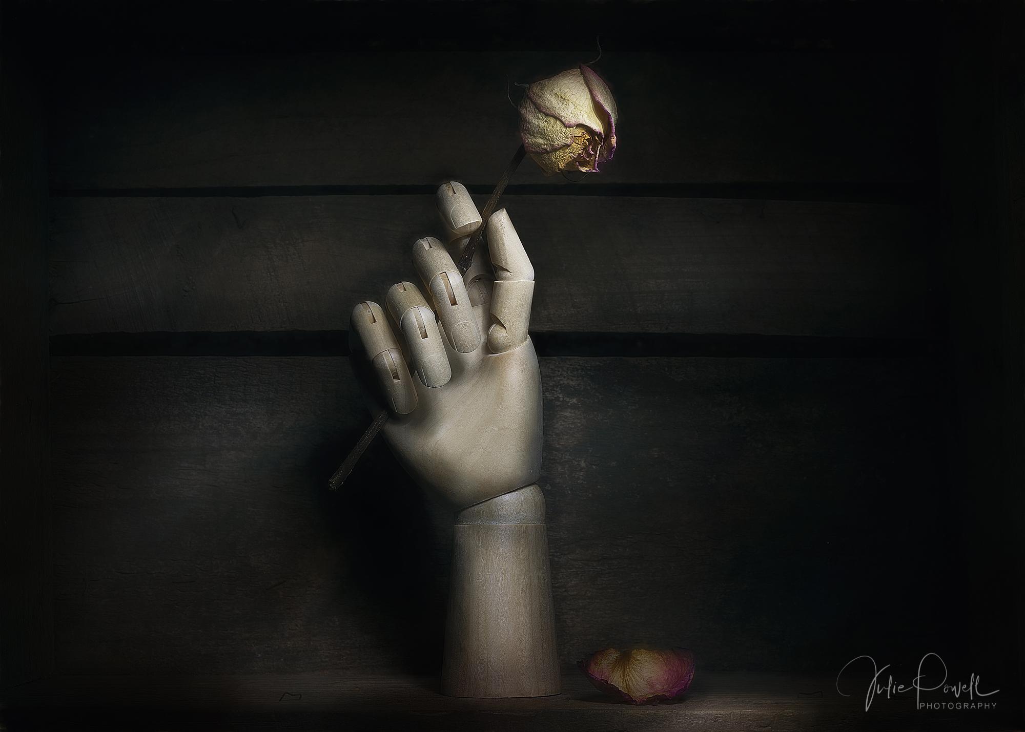 Julie Powell_The Rose.jpg