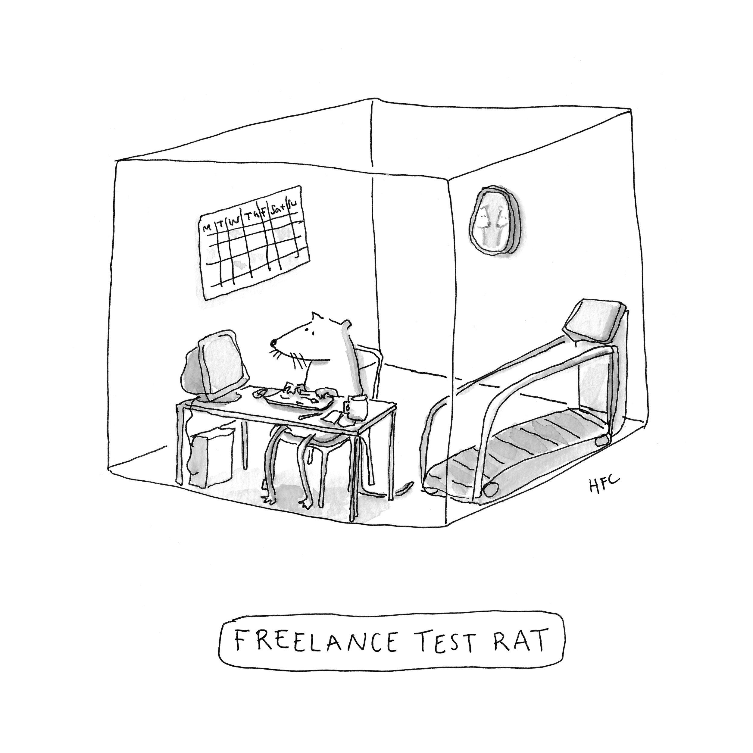 NewYorker_FreelanceRat.jpg