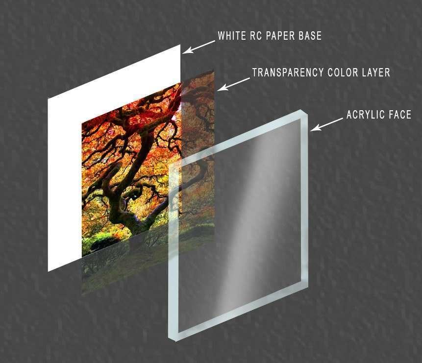 Lumachrome-Layers.jpg