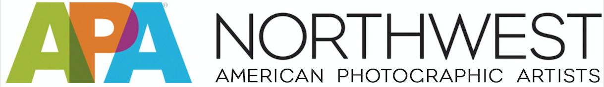 APA NW Logo