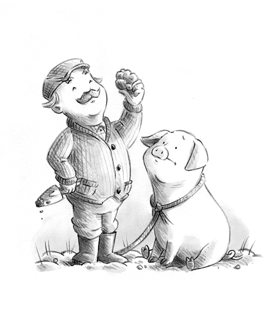 Truffle Pig_2.jpg