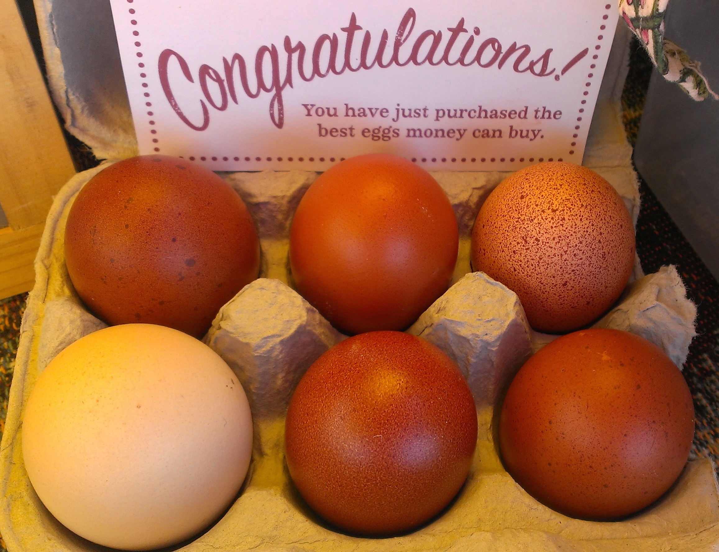 Our eggs are Awa certified - guaranteeing family farm - highest animal welfare standards