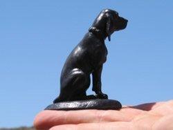 dolly-hound.jpg