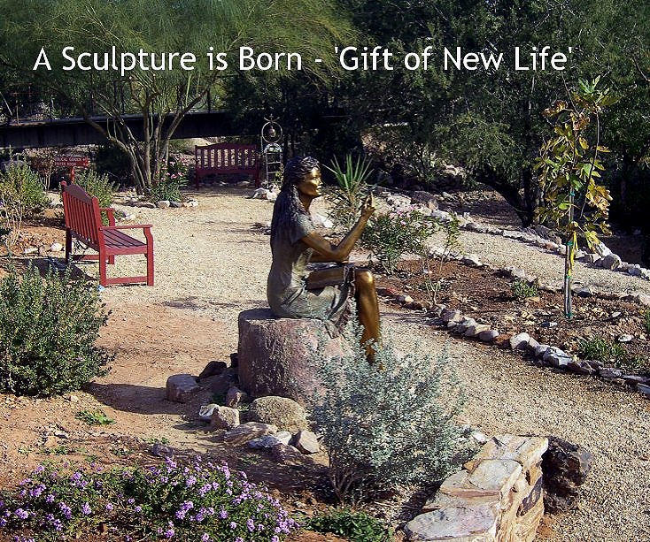 Gift of New Life - Purchase the book