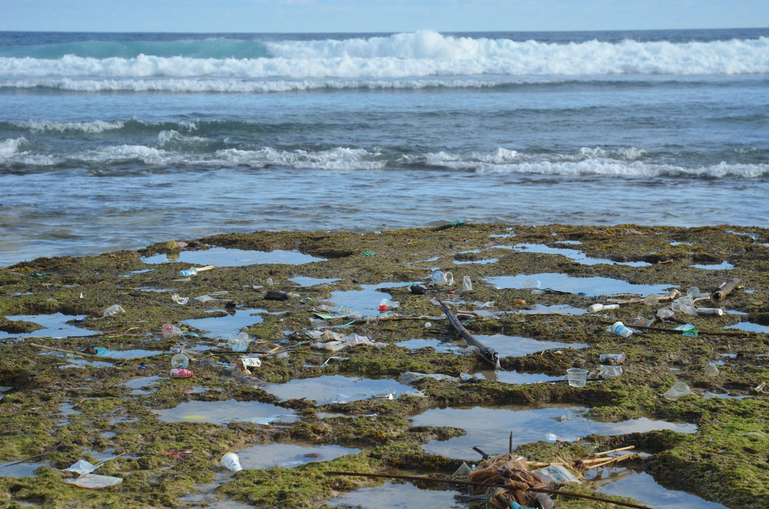 vegan get rid of plastic hawaii blogger travel