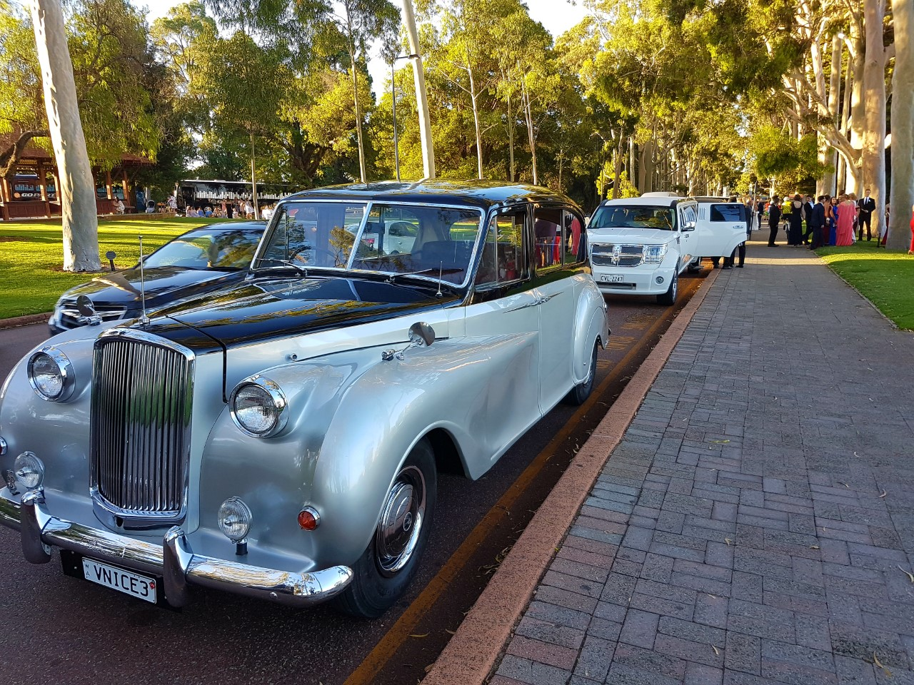 Very Nice Classics Cars & Limousines