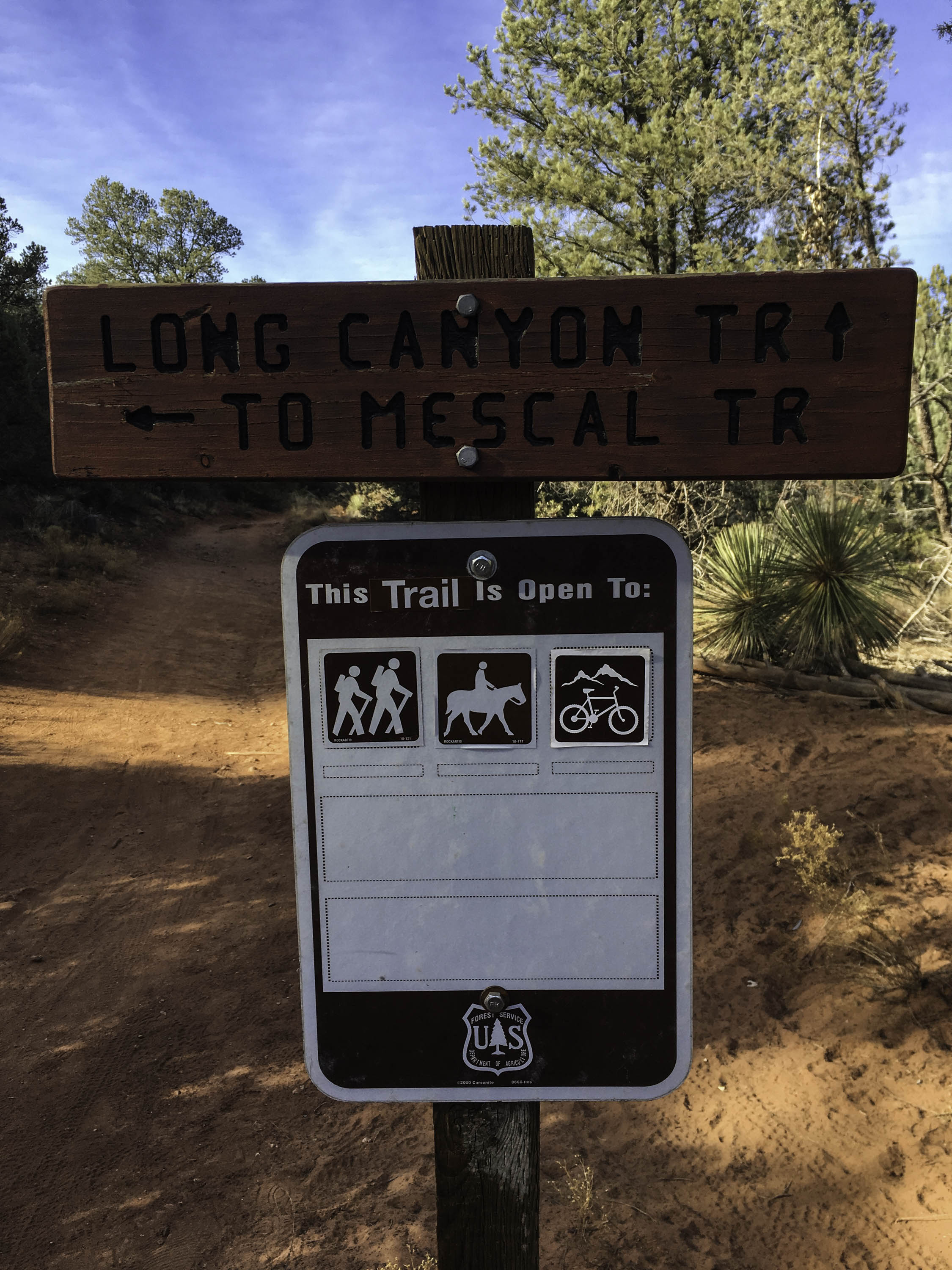 Go straight on Long Canyon Trail.