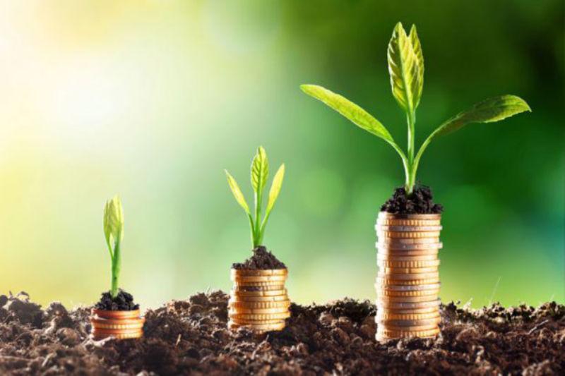 Transformerpreneur Small Business Finance Health Check Strategy Growth Money
