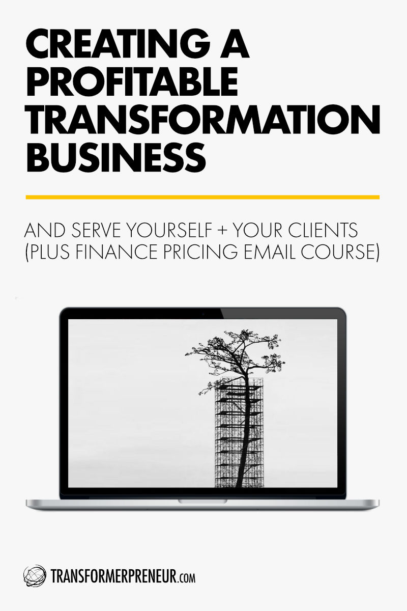 TCC - Blog Post - Template - 0011 - Creating A Profitable Transformation Business - 800px.jpg
