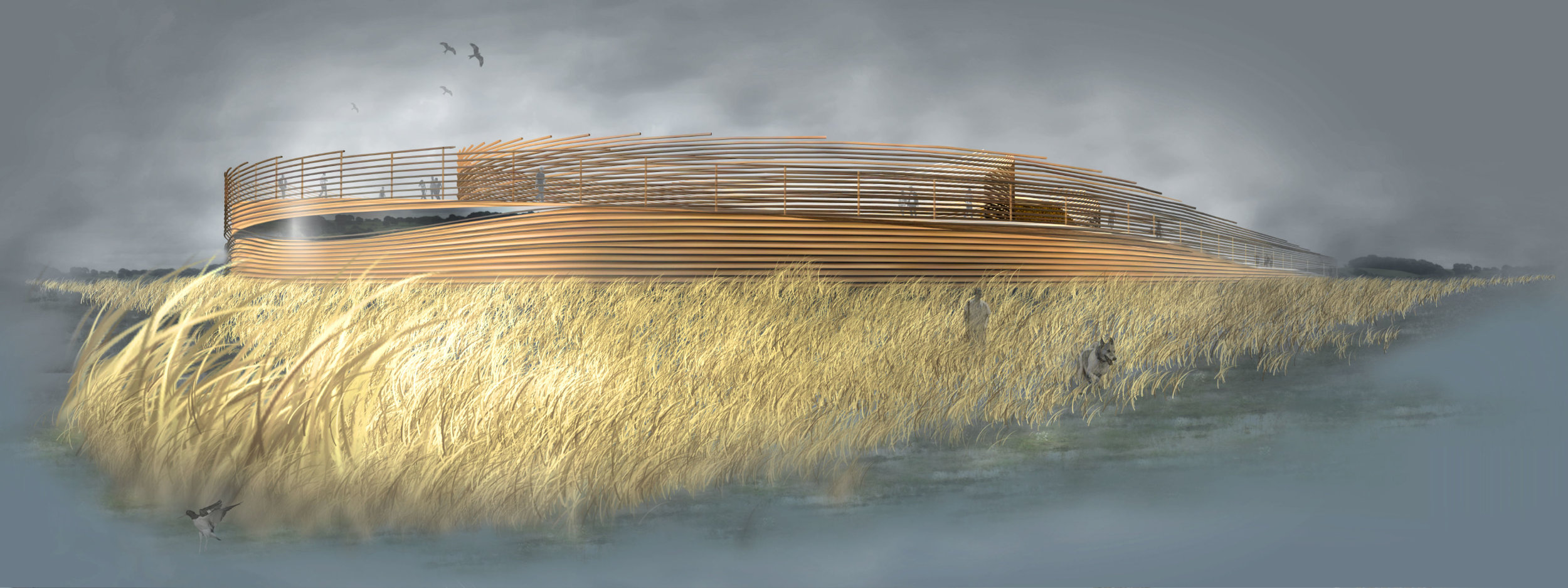 Richard Conner Architect Artist Wetland Visitor Centre 4000px 80PCC.jpg