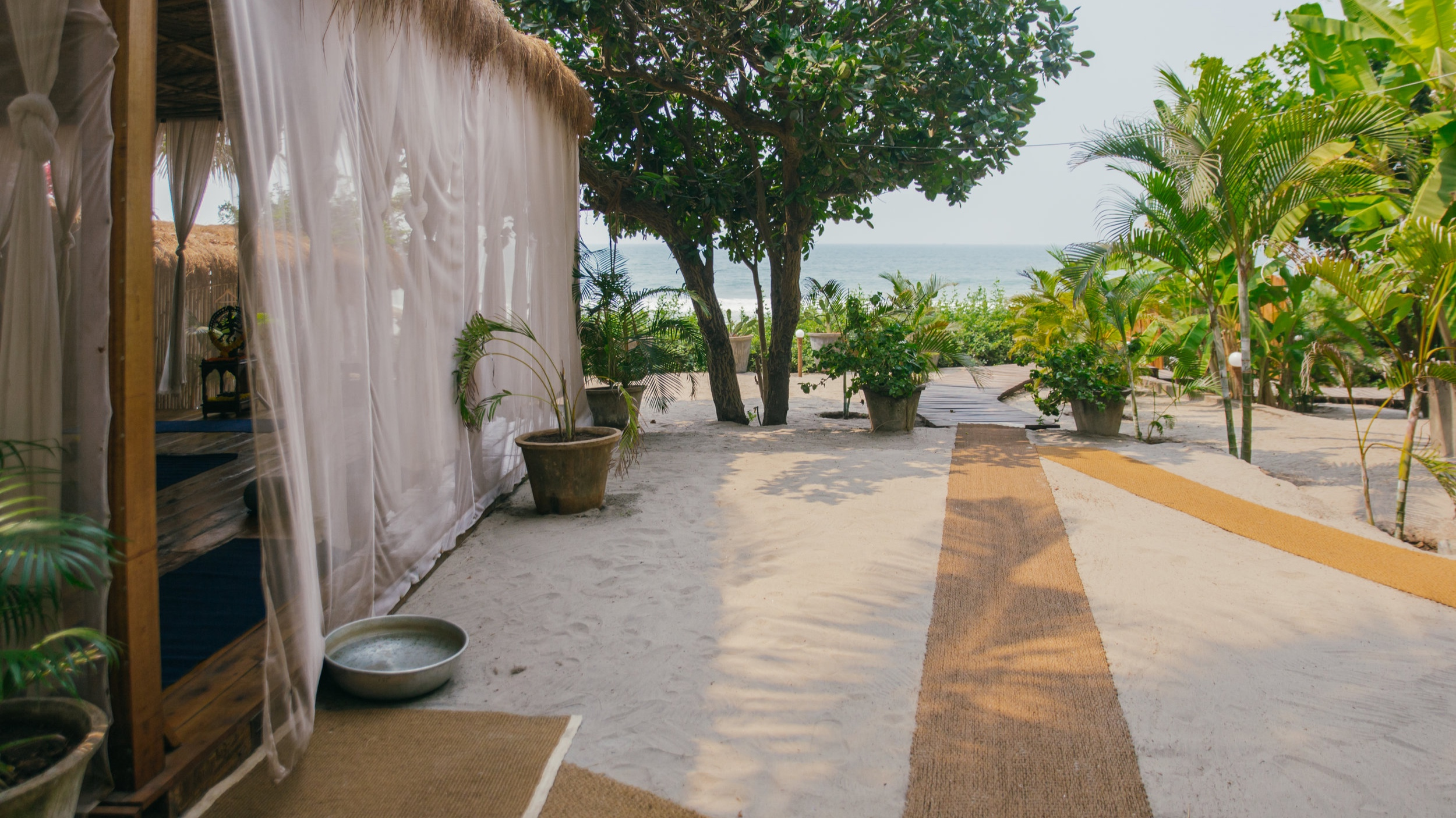palmgroveshala3.jpg