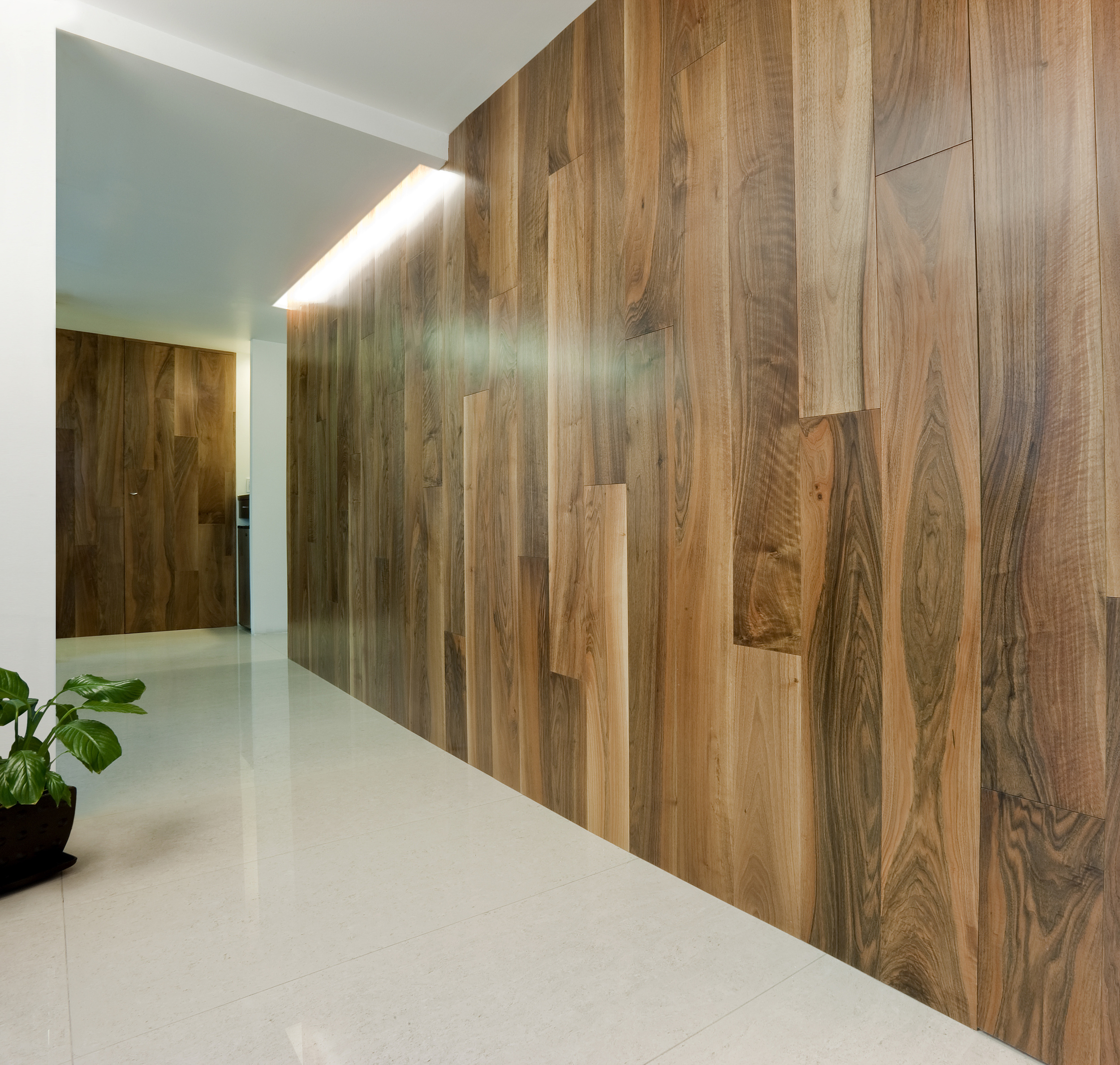 Wall and doors in AA European Walnut