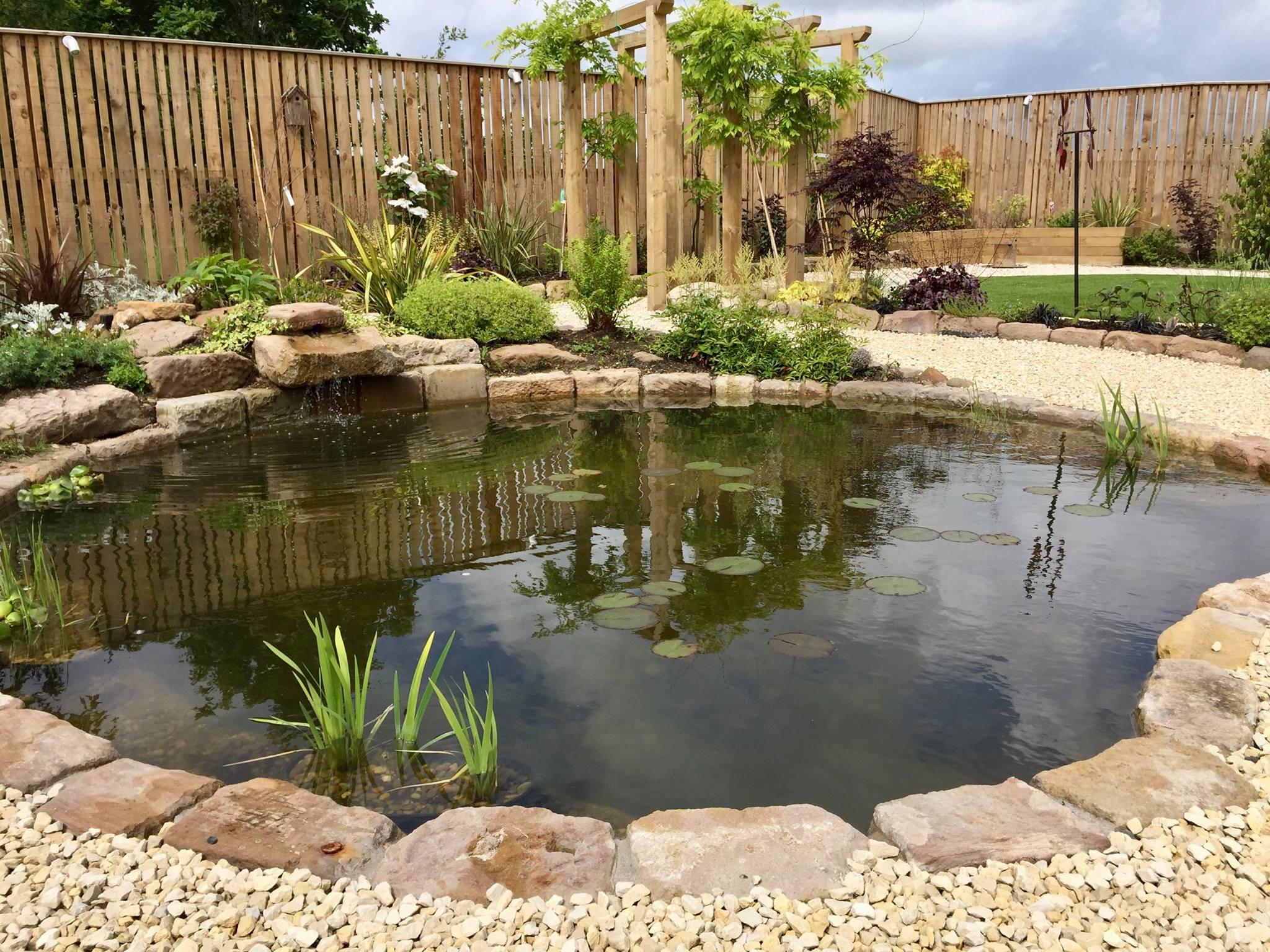 Nature Pond, Lenzie