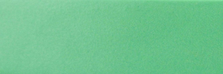 16029 -  GREEN  22 x 2 mm