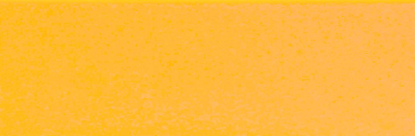 11131 -  YELLOW  22 x 2 mm