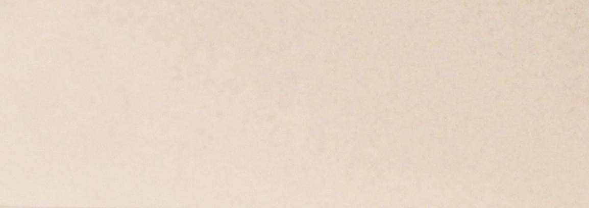 111 -  Cashmere  22 x 1 mm