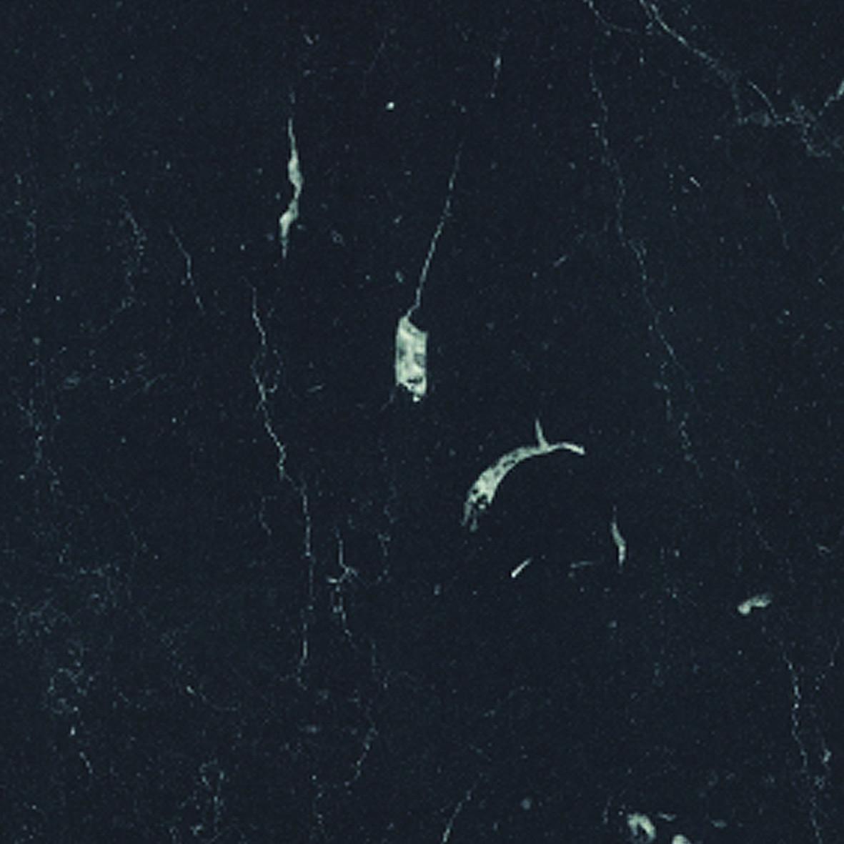 Roma Marble 6499