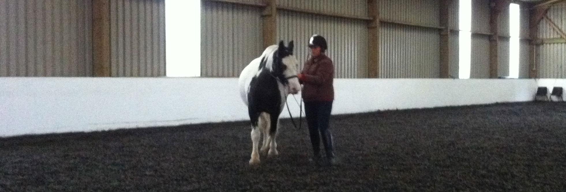 Jade & Mickey training at Heather Moffetts