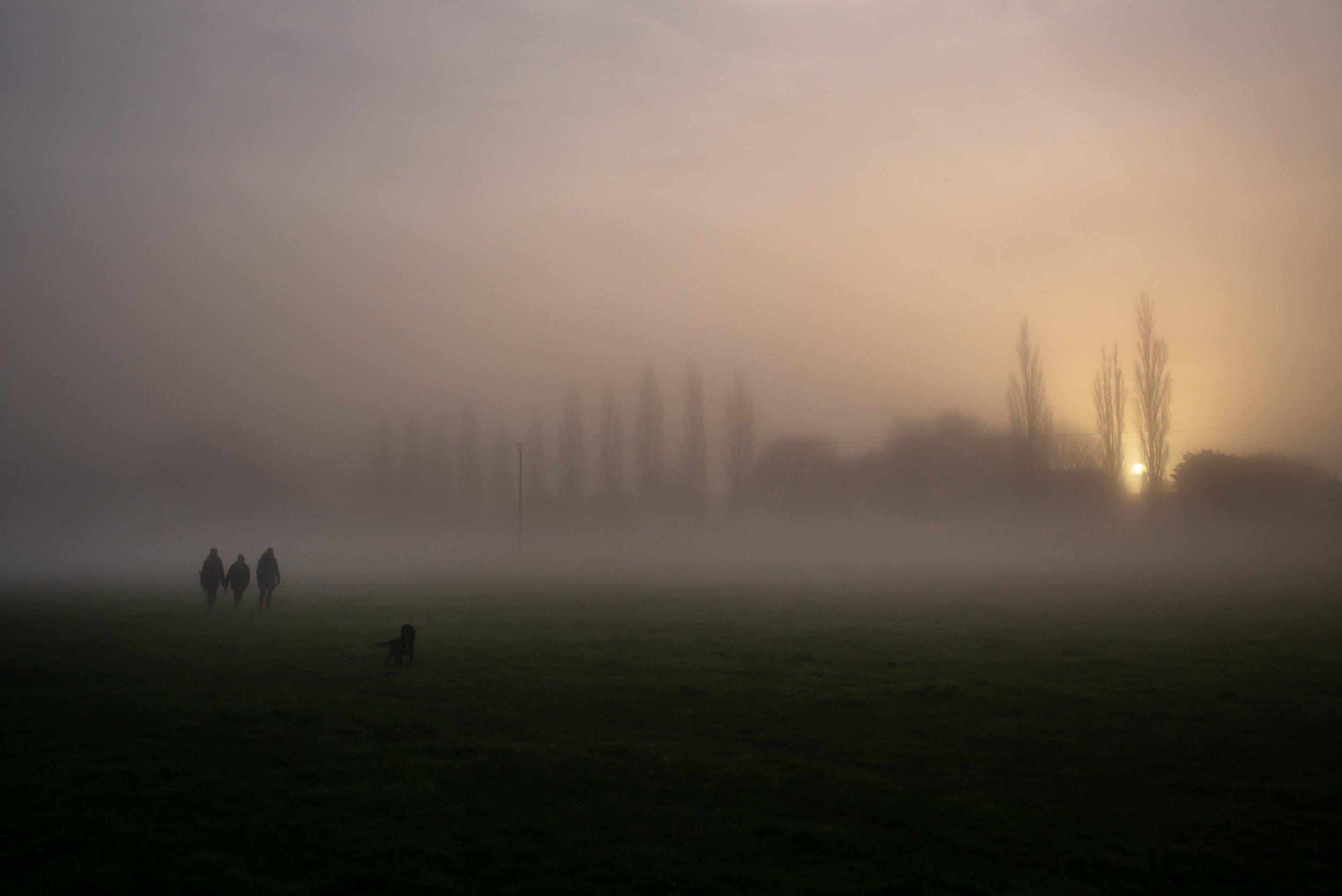 Morning Dog Walkers.jpg
