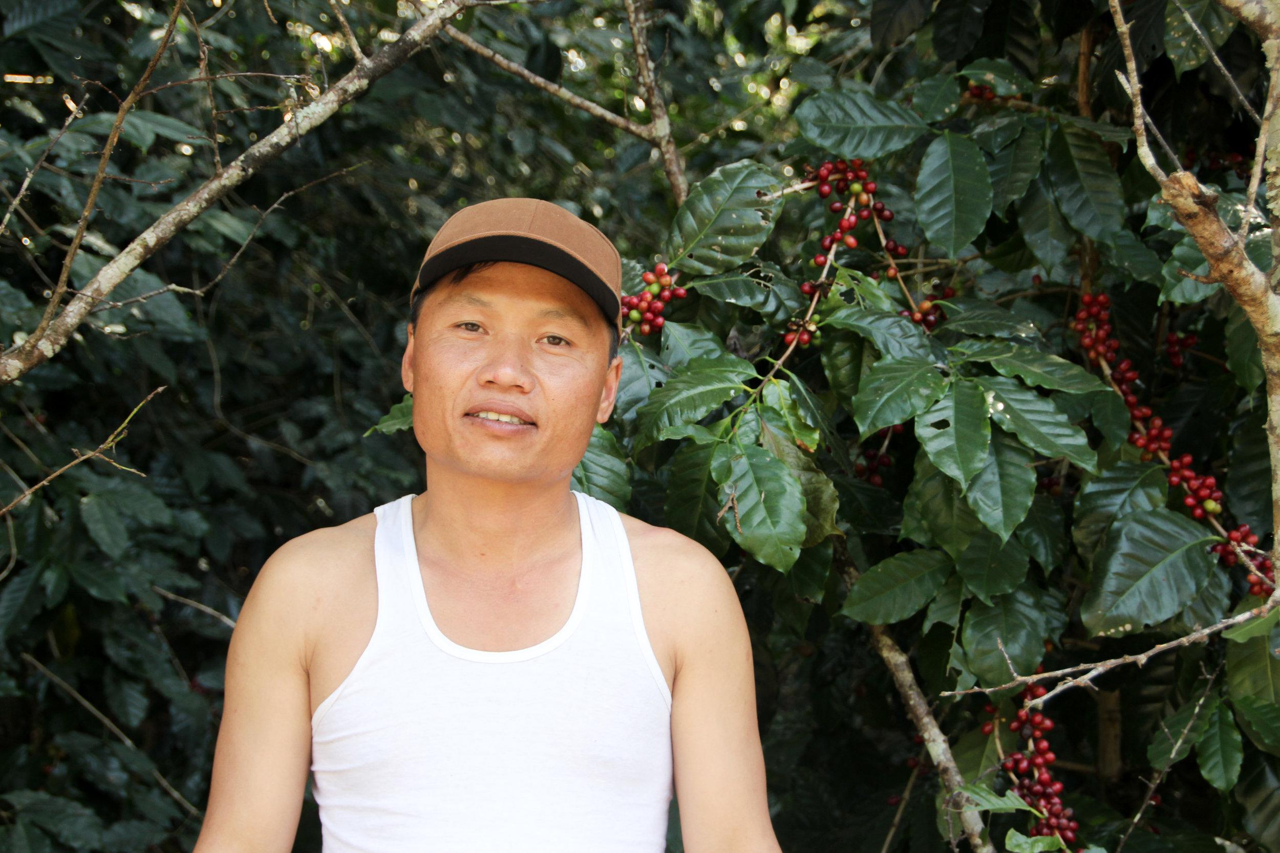 Ko Pheelay,a Coffee Producer in Myanmar