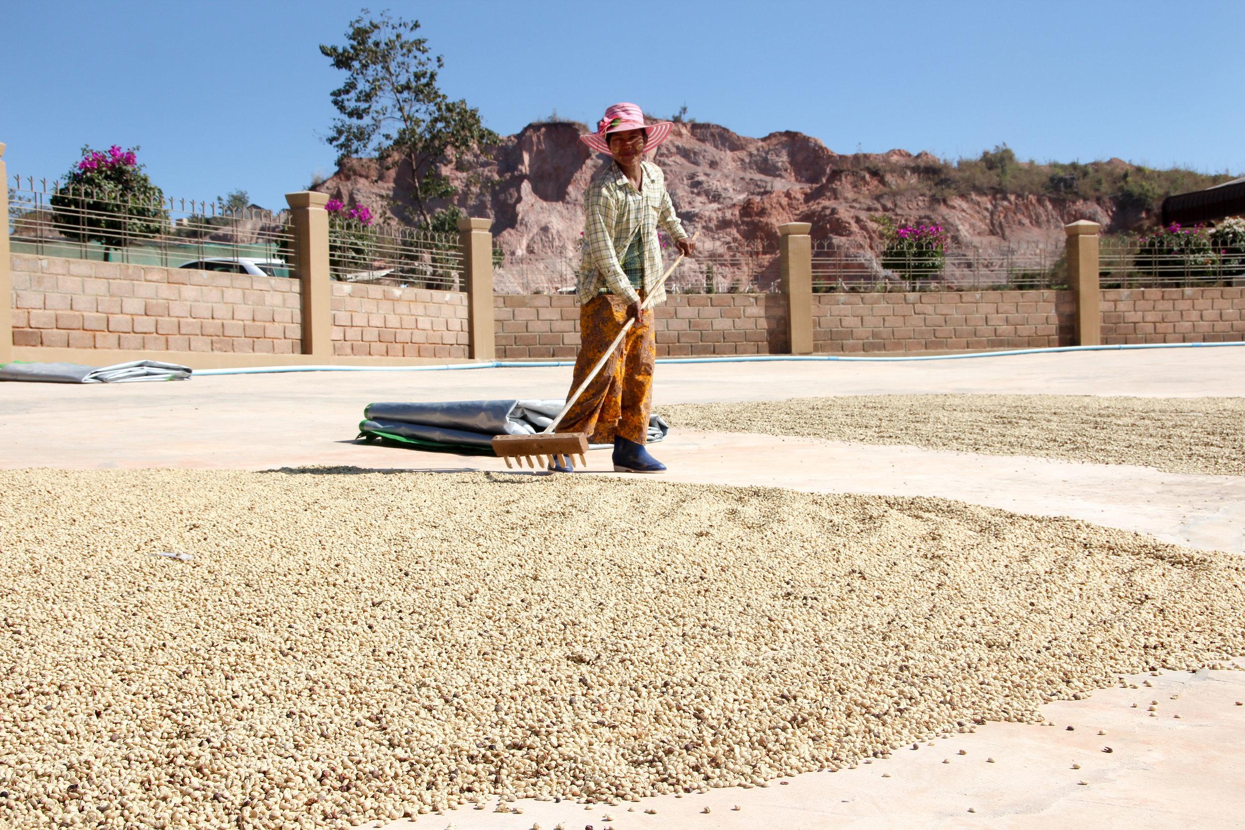 Patio Worker Rotating Coffee