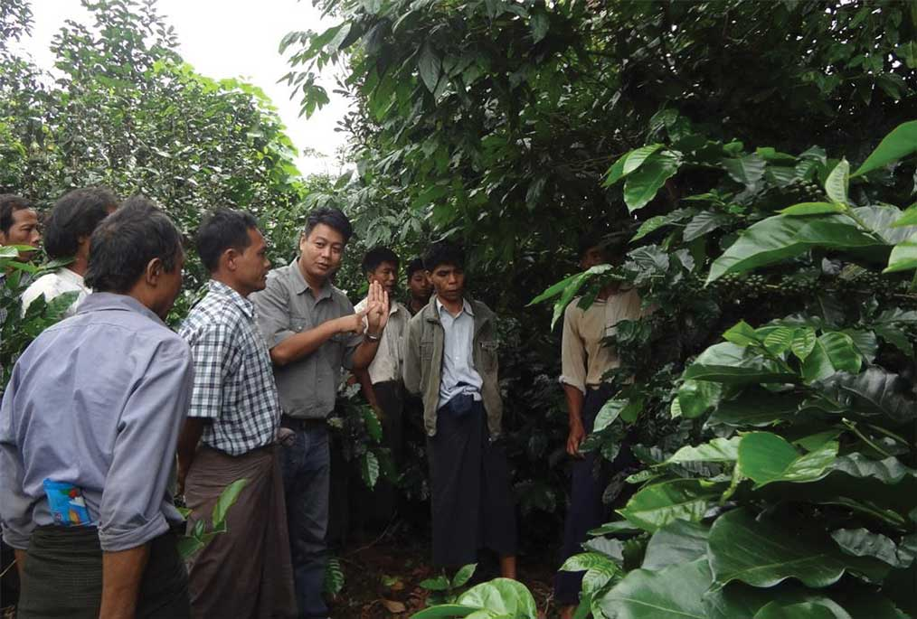 Agronomist and senior program officer with Winrock International, Ko Ko Win (above in center). (Photo: courtesy of Ko Ko Win.)