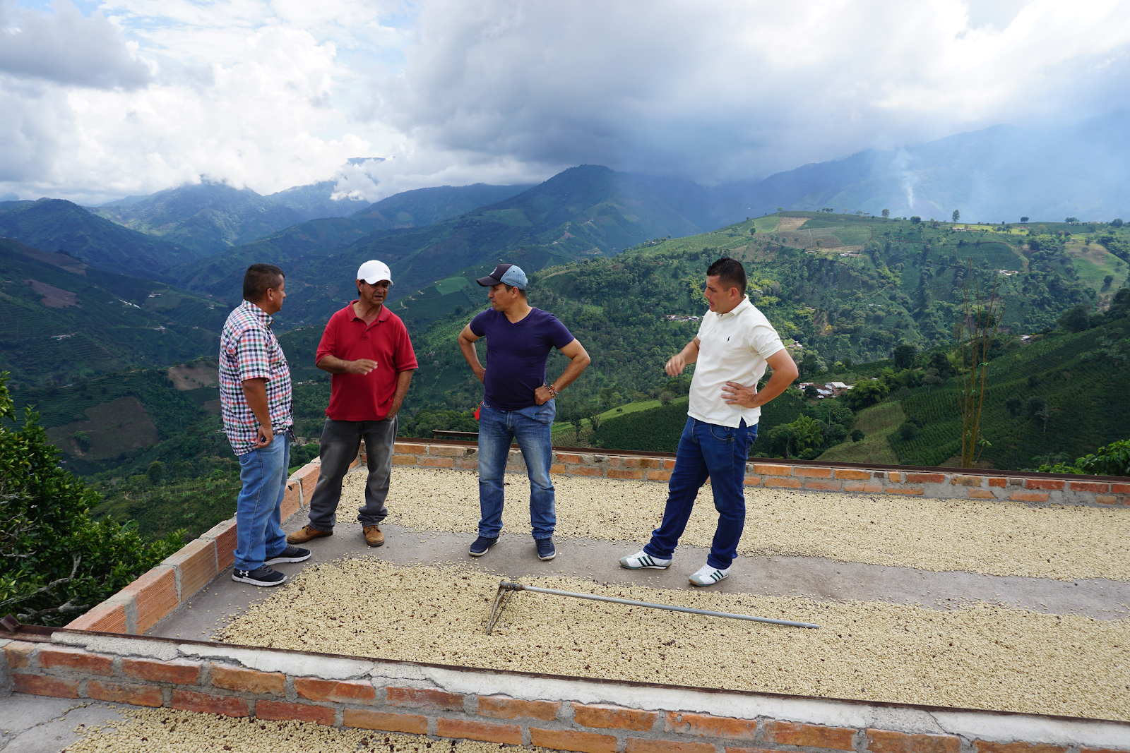 Risaralda producers talking shop on a rooftop drying patio near Santuario. We spent the day with members of six Risaralda growers associations and were blown away by the generosity, support, and knowledge shared among the coffee community in the area. The producers there  believe that with their unique terroir and quality improvements they could one day be known as one of the premiere coffee growing regions in Colombia.