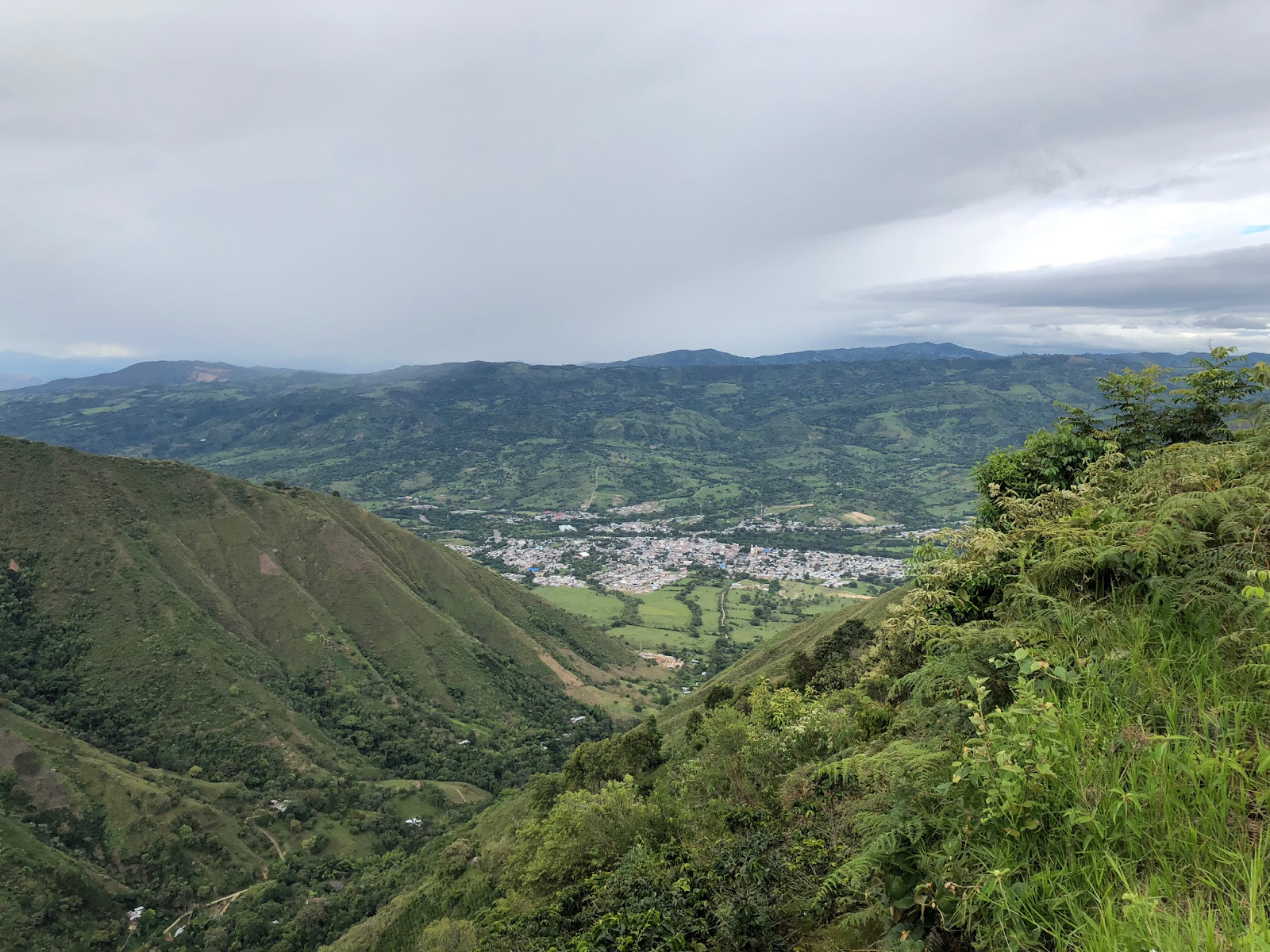A view of La Plata, Huila from a farm in Belen. The majority of our current Colombian coffee is grown in these mountains and delivered to the city below for purchase. Their unique coffees are sweet and balanced with strong caramel and citrus notes, a versatile profile featured prominently in our Congress and Republic blends.