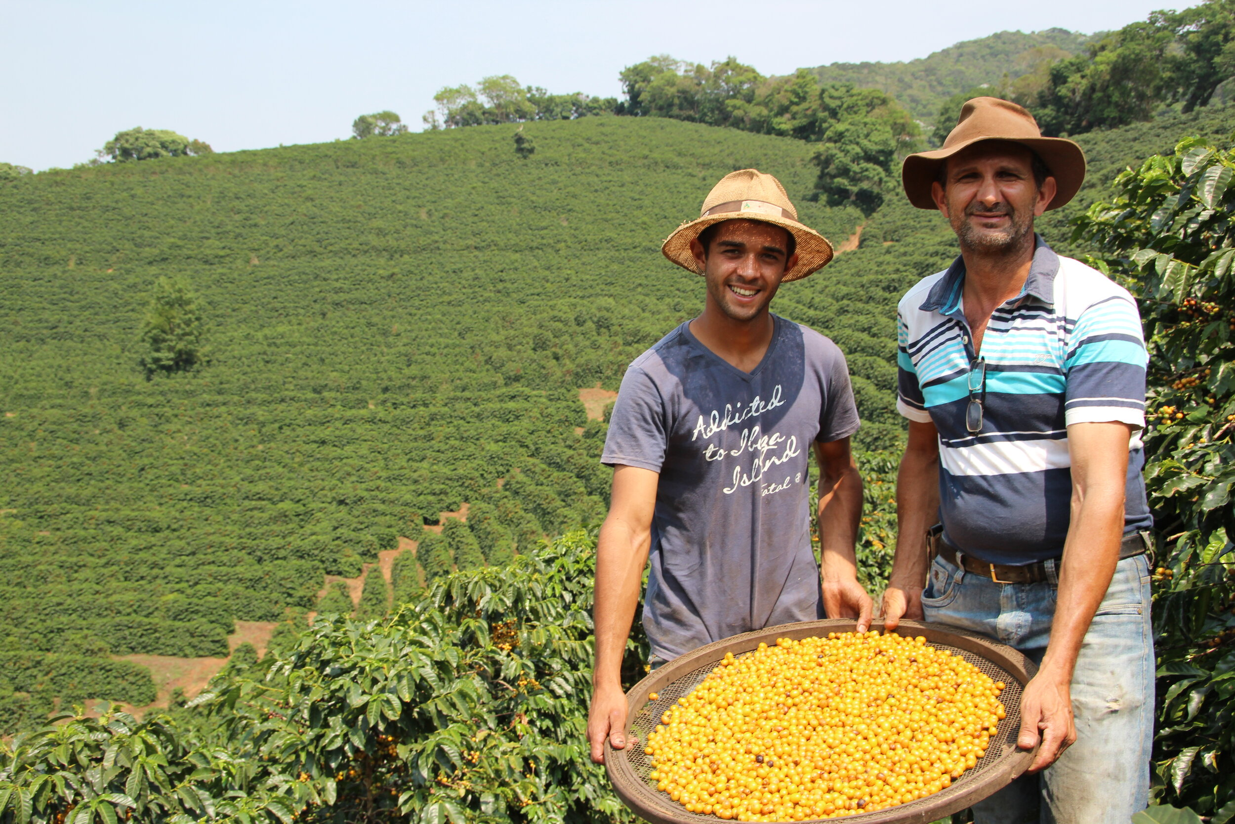 Sebastião and his son Helisson showing the quality of their harvest