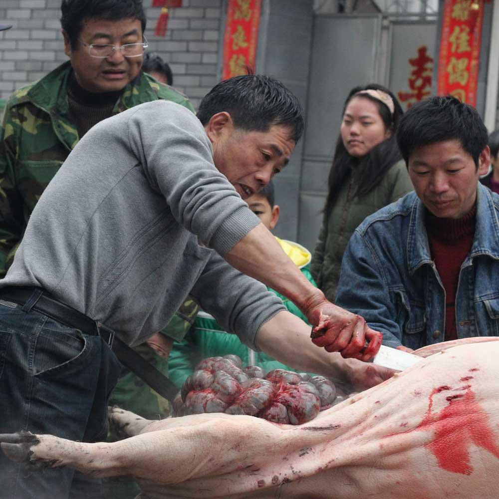 village-butcher-head4.jpg