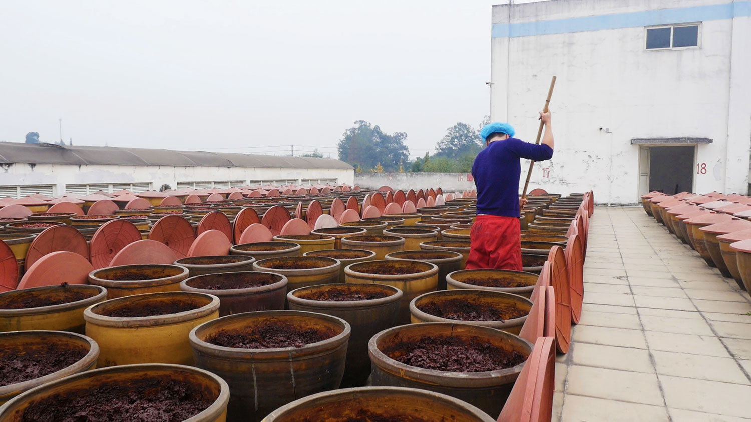 At a Pixian County bean paste factory, a sweaty young man systematically pushes a long wooden pestle through the jars of thick  doubanjiang , turning the bean paste from the bottoms of the pots up, exposing it to light, humidity, and oxygen.