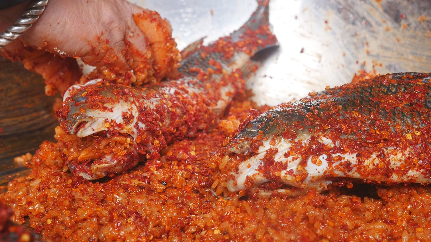 A mix of chillis, sticky rice, rice wine, and other seasonings are mixed into a sticky orange paste that adheres to the flesh of the fish, which are stuffed and folded with the mixture before going into the pickling jar.