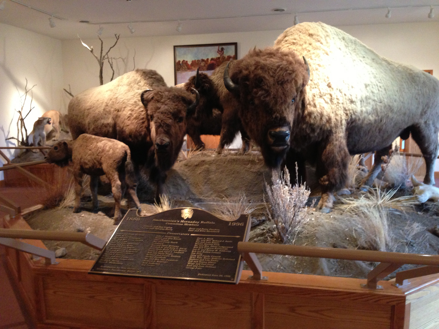 Museum of the Northern Great Plains, Fort Benton, Montana