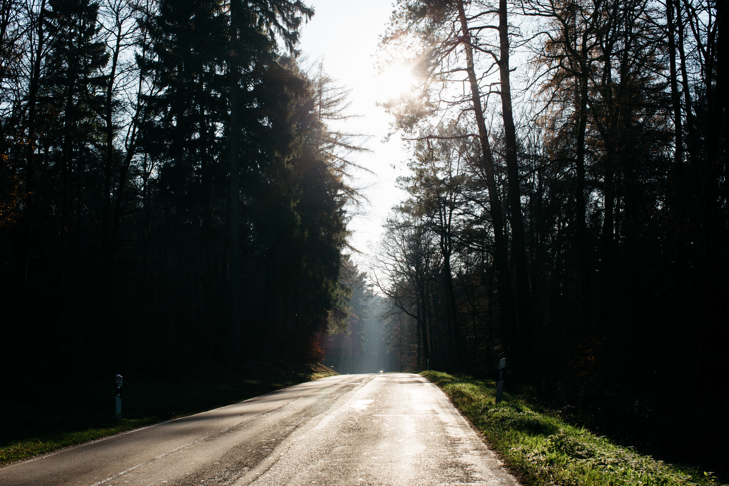 autobahn-germany-fortitude-and-finn.jpg