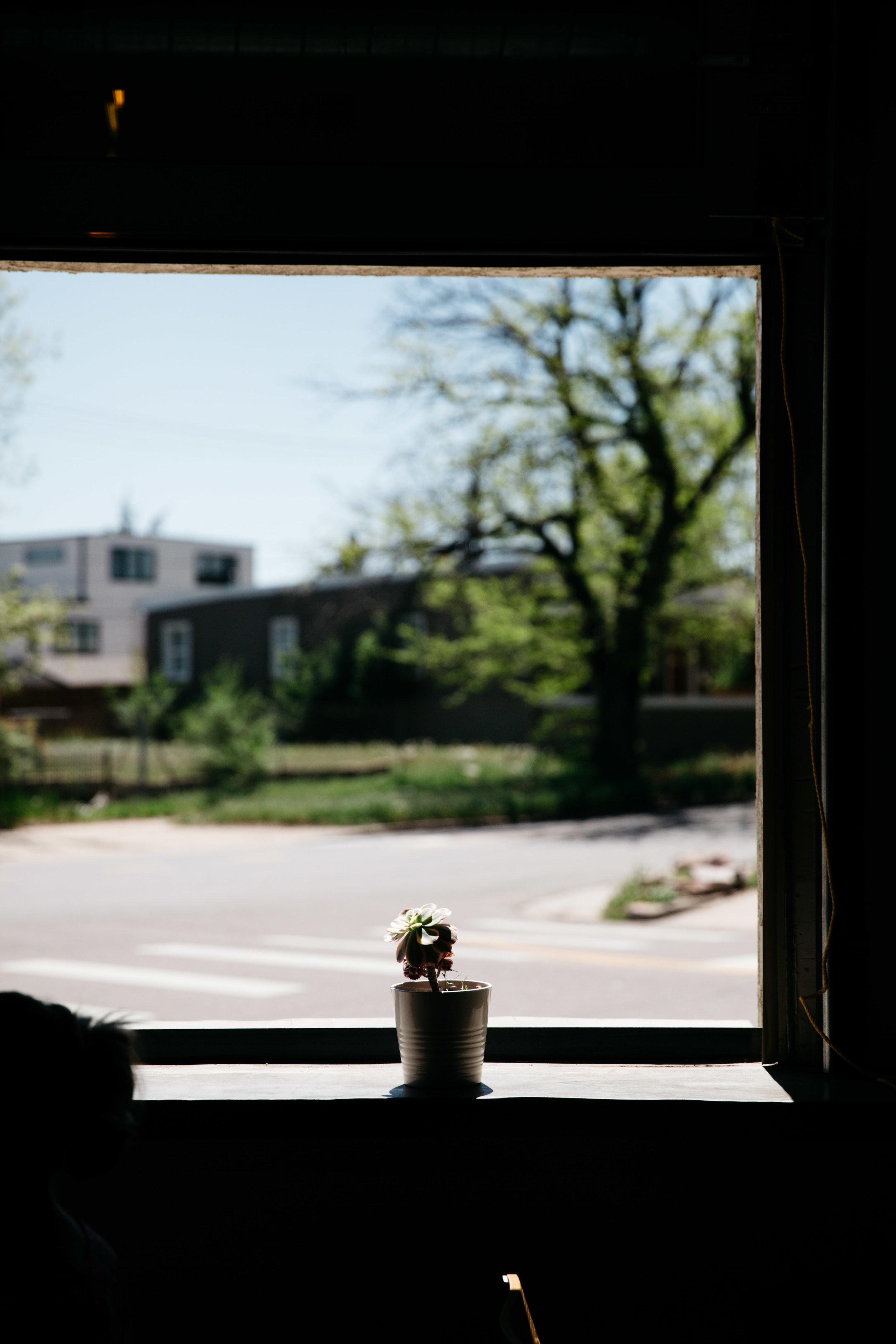 Huckleberry-coffee-tour-fortitude-and-finn-20.jpg